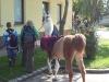 lamatrekking-wg1-2011-223