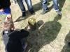 Holzpflock mit Moos bedeckt, Kerzerl rundherum Tannenzapfen -  davor sitzt ein Kind