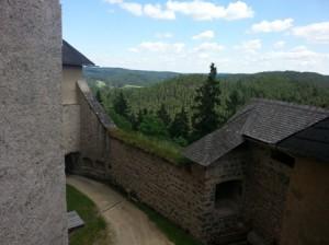 Burg dahinter Wald