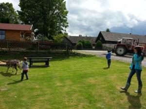Kinder auf einer Wiese, Traktor, eine Ziege