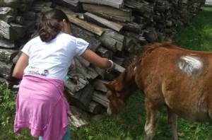 Pferd - Kind bei einem Holzstoß