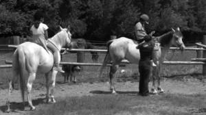2 Kinder reiten auf Pferden in einer Koppel - ein Kind wird geführt