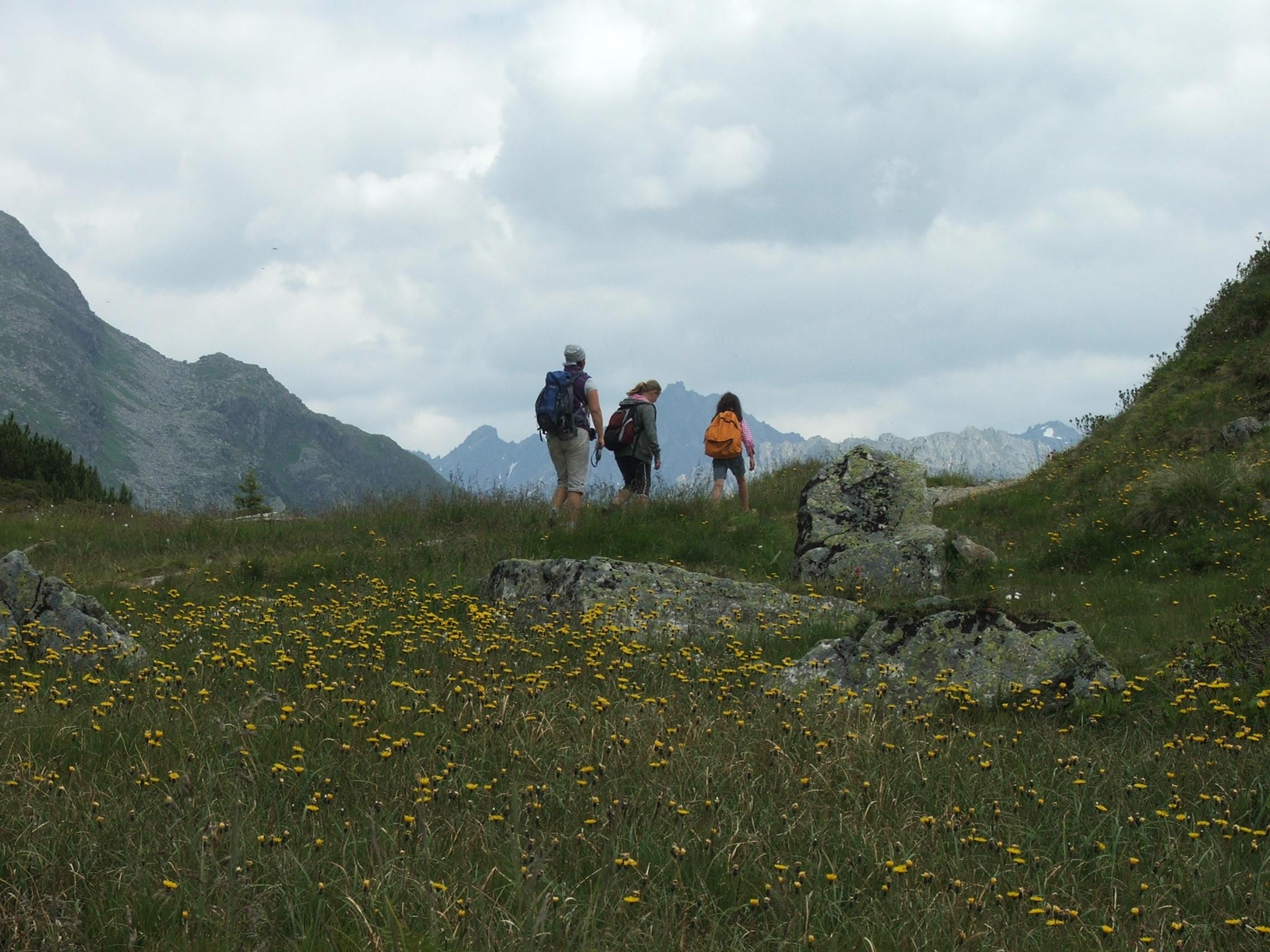 3 Menschen in den bergen im Vordergrund eine Blumenwiese