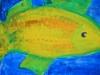 Bunte Kinderzeichnung - Fisch