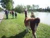 lamatrekking-wg1-2011-217