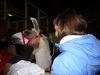 Lama im Stall wird nach dem Halftern gestreichelt