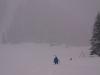Schneegestöber - Winterlandschaft