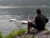 Bub beobachtet Schwäne am Traunsee