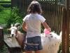 Ziege wird von Mädchen gestreichelt