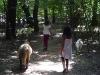 2 Mädchen gehen mit Ziegen spazieren